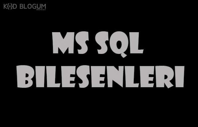 ms-sql-bilesenleri