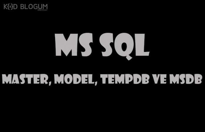 ms-sql-master-model-temp