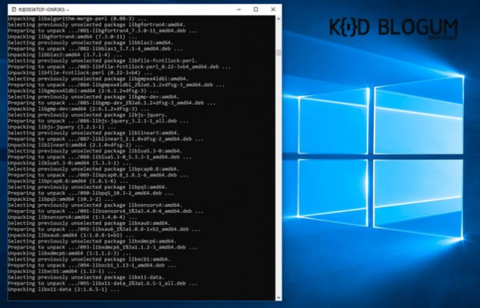 windows-kali-linux